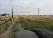 venta de terreno sobre la via samborondon 80000 m2