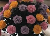 Aprenda a preservar sus rosas