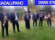 Guadalupano tú mariachi whatsapp 09999 37811