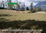Se vende lote de terreno de 5.554m2 en cotacachi