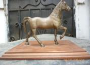 Venta de caballos de bronce en guayaquil ecuador