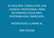 Se requiere conductor profesional