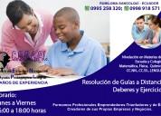 Ayuda pedagógica y nivelación en materias
