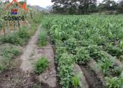 Venta de terreno en chaltura con agua de riego