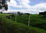 Vendo hacienda 54 5 hectareas infraestructura ganadera cayambe quito