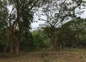 Venta de terreno en jama sector costanera coaque pedernales