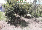 Vendo  lote de terreno de  3.000m2  en chaltura