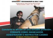 Cursos de capacitaciÓn para guÍas caninos