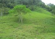 Terreno agricola manabi vendo finca ganadera de 1000 has 10000000 m2