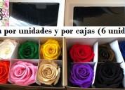 Flores naturales preservadas rosas eternas