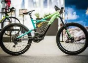 2019 specialized men's turbo levo fsr expert