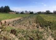 Terrenos de renta tababela 5000 m2