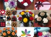 Asesoría para producción de flores  preservadas