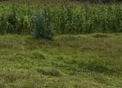 Vendo terreno barato en la raya (cuenca)