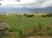 Vendo en chaltura 7.500 m2 de terreno