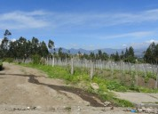 Vendo terreno de 12.000 m2 en atuntaqui san roque