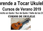 Ukulele / charango / guitarra / cuatro venezolano