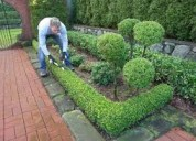 Jardinero particular a domicilio