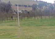 Finca ganadera de 12 hectareas en - cayambe