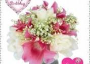 Contactame al 0988966659 por whatssap