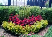 Servicio de paisajismo y jardineria