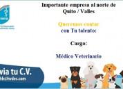 Medico veterinario con experiencia