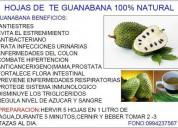 Ofresco hojas de te de guanabana producto 100% na