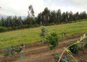 Vendo terreno de 5.000 m2 en jatun rumi atuntaqui
