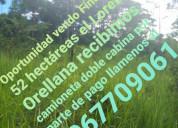 Vendo finca de 52 hectareas en orellana