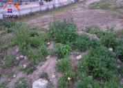 Venta de terreno en chaltura por la casa del cuy