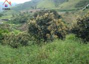 Venta de propiedad en intag sector irubi