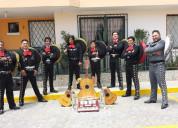 Mexiquito mariachi 0987883302