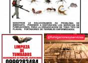 Murcielagos 0999283484 garantia 1 aÑo