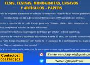 Asesores directos en papers, tesis y ensayos